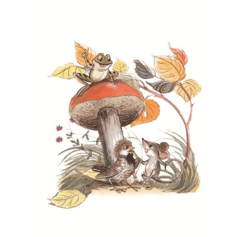 Сказки о грибочках в картинках