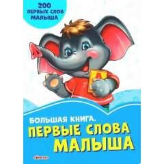 Васильковые книги. Большая книга. Первые слова малыша